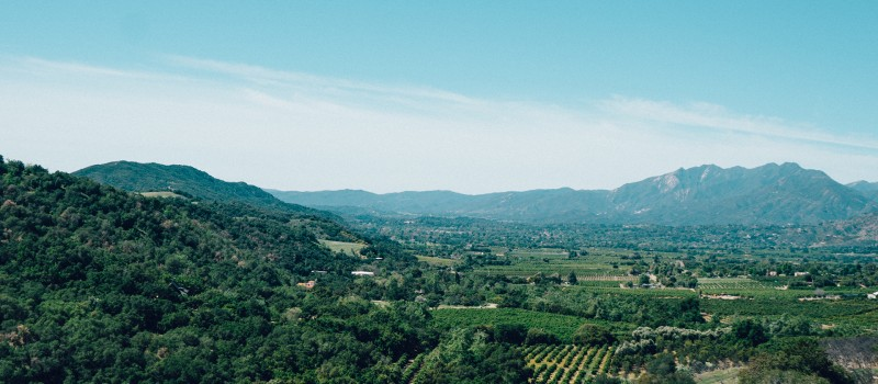The 10 DO wine regions of Catalonia worth a visit!